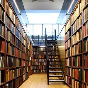 Библиотеки Бологого