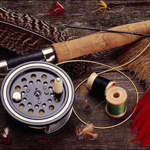 Охотничьи и рыболовные магазины Бологого